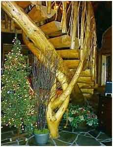 sweeping log stairs